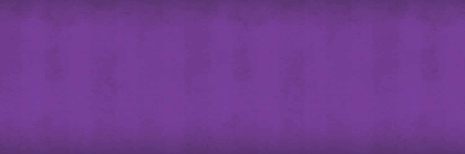 Back Slider Purple